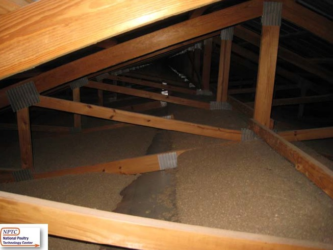 Fiberglass vs cellulose porter insulation products for Blown in insulation vs batts